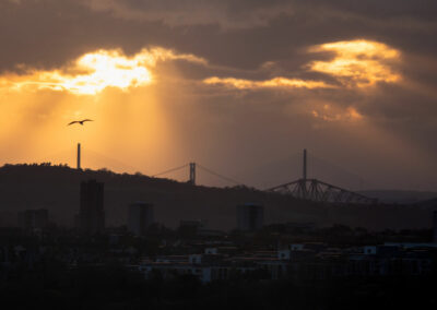The 3 Forth Bridges from Calton Hill